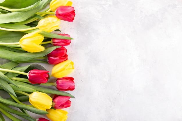 Czerwone I żółte Tulipany Premium Zdjęcia