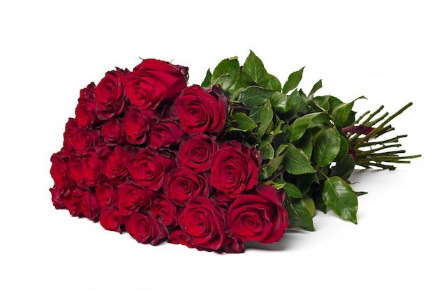 Czerwone róże na białym tle. Premium Zdjęcia