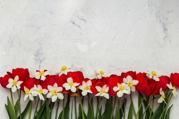 Czerwone Tulipany I Białe żonkile Na Jasnej Powierzchni Kamienia. Leżał Płasko, Widok Z Góry Premium Zdjęcia