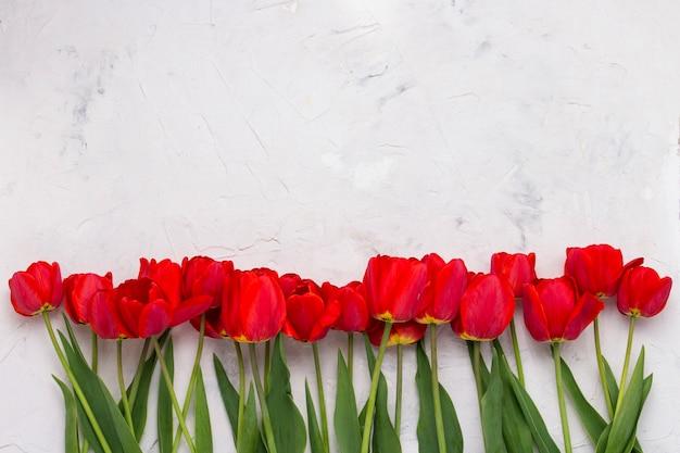 Czerwone Tulipany Wyłożone W Jednej Linii U Dołu Obrazu Na Jasnej Kamiennej Powierzchni. Leżał Płasko, Widok Z Góry Premium Zdjęcia