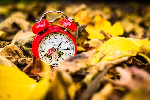 Czerwony Zegar Vintage W żółtych Liści Jesienią Premium Zdjęcia