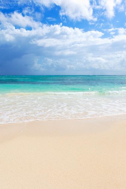 Część Plaży Na Morzu Karaibskim W Meksyku Darmowe Zdjęcia
