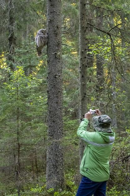 Człowiek Robienia Zdjęć Sowy Siedzącej Na Drzewie Darmowe Zdjęcia