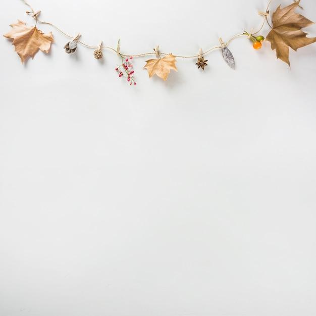 Dekoracje Na Jesień Z Miejscem Na Dole Darmowe Zdjęcia