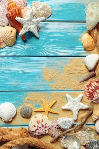 Denna arkana z wiele różnymi dennymi skorupami na dennym piasku na błękitnym drewnianym tle Premium Zdjęcia
