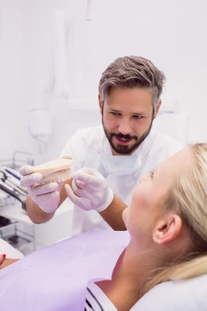 Dentysta Pokazuje Model Protezy Pacjentowi Darmowe Zdjęcia