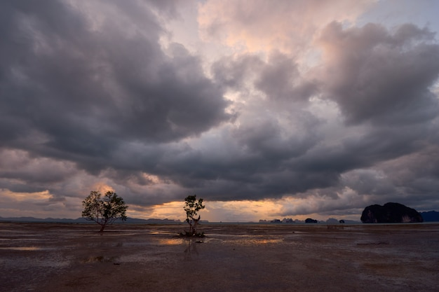 Deszczowe chmury nad otwartym obszarem odpływu. Premium Zdjęcia