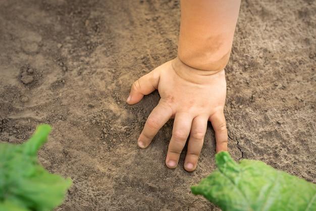 Dłoń Dziecka Dotykać Suchej Gleby Premium Zdjęcia