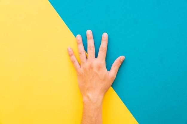 Dłoń Na żółtym I Niebieskim Tle Darmowe Zdjęcia