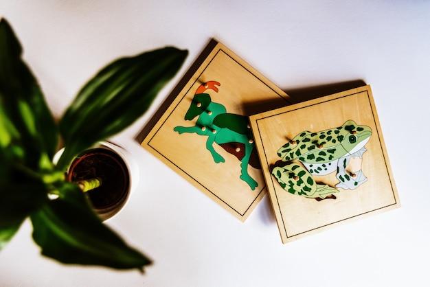 Dłonie Dziecka Uczące Się Dopasowywać Elementy W Puzzle Drewniane Zwierząt 3d. Premium Zdjęcia