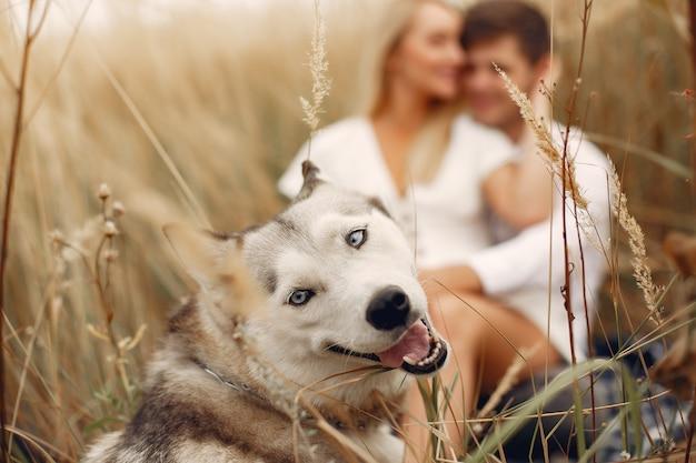Dobiera się w jesieni polu bawić się z psem Darmowe Zdjęcia