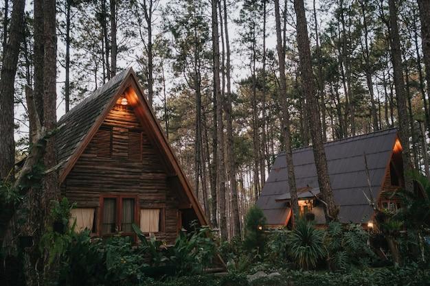 Dom Wakacyjny W Lesie Sosnowym Premium Zdjęcia