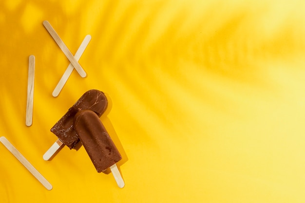 Domowe Lody Czekoladowe Popsicle I Cień Liści Darmowe Zdjęcia