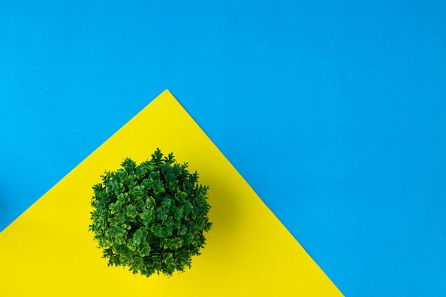 Doniczka Na żółty. Premium Zdjęcia