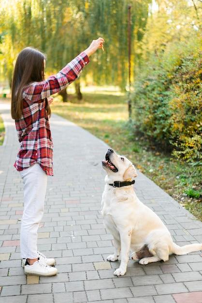 Dorosła kobieta bawić się z labradorem w parku Darmowe Zdjęcia