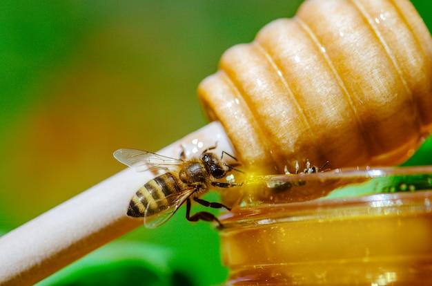 Drewniana Chochla I Zachodnia Pszczoła Pszczoła Miodna O Naturze. Miód Z Latającą Pszczołą Miodną Premium Zdjęcia
