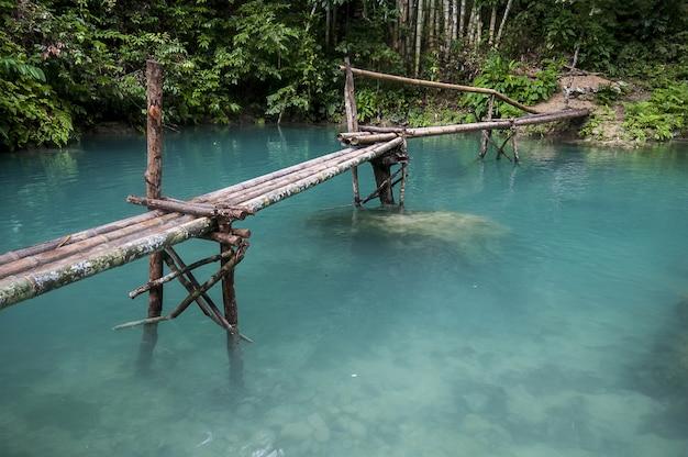 Drewniany Most Nad Pięknym Jeziorem W Lesie W Cebu Na Filipinach Darmowe Zdjęcia