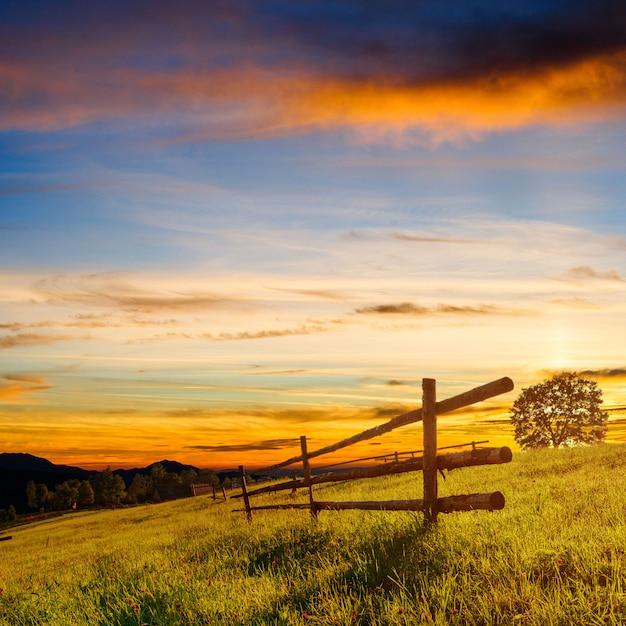 Drewniany Płot - Piękna łąka Okryta Kwiatami Premium Zdjęcia