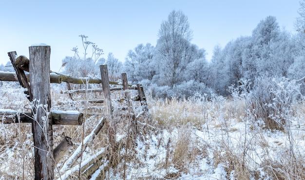 Drewniany Płot W Lesie Zimą. Premium Zdjęcia