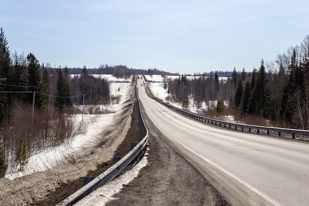 Droga Asfaltowa W Lesie. Piękna Podróż Premium Zdjęcia