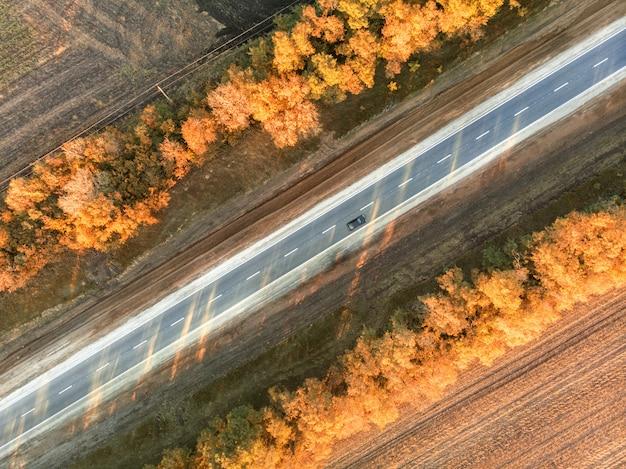 Droga Jesienią Premium Zdjęcia