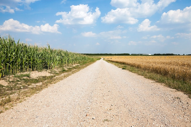 Droga Krajowa Utwardzona, Przebiegająca Przez Pole Uprawne Premium Zdjęcia