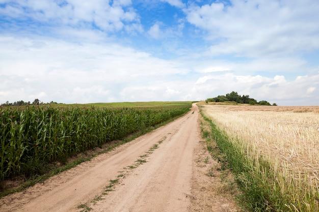 Droga Krajowa Utwardzona, Przechodząca Przez Pole Uprawne Premium Zdjęcia