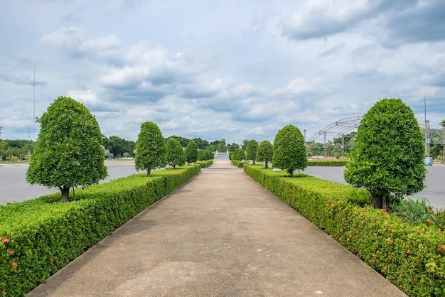 Droga prosto uporządkowany ogród ozdobny Premium Zdjęcia
