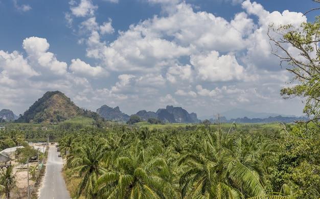 Droga Przez Las I Góry W Oddali Darmowe Zdjęcia