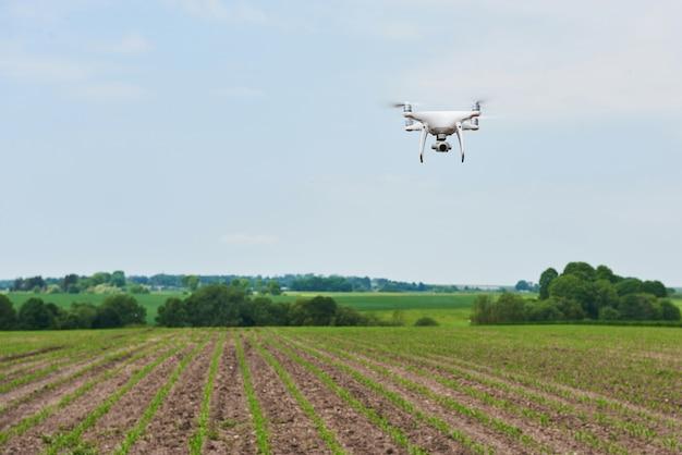 Drone Quad Copter Z Aparatem Cyfrowym O Wysokiej Rozdzielczości Na Zielonym Polu Kukurydzy, Darmowe Zdjęcia