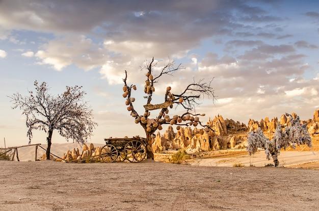 Drzewo życzeń Z Glinianymi Garnkami W Kapadocji. Prowincja Nevsehir, Kapadocja, Turcja Premium Zdjęcia