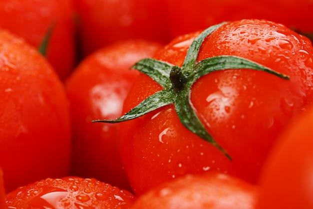 Dużo świeżych dojrzałych pomidorów z kroplami rosy. Premium Zdjęcia