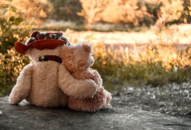 Dwa Misie Siedzą Na Pniu, Przytulając Się Na Tle Jesiennego Lasu Premium Zdjęcia