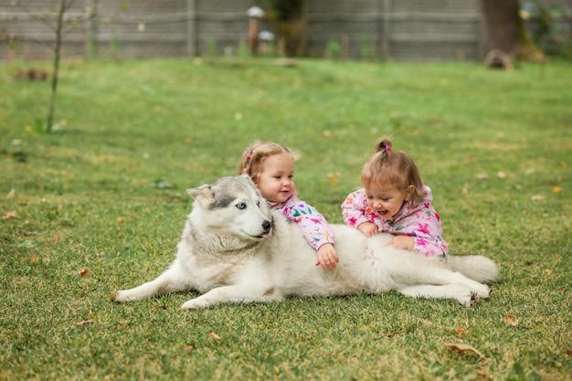 Dwie Małe Dziewczynki Bawiące Się Z Psem Na Zielonej Trawie Darmowe Zdjęcia