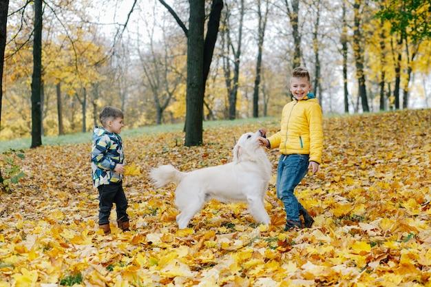 Dwóch chłopców zabawy bawi się z psem w parku jesienią Premium Zdjęcia