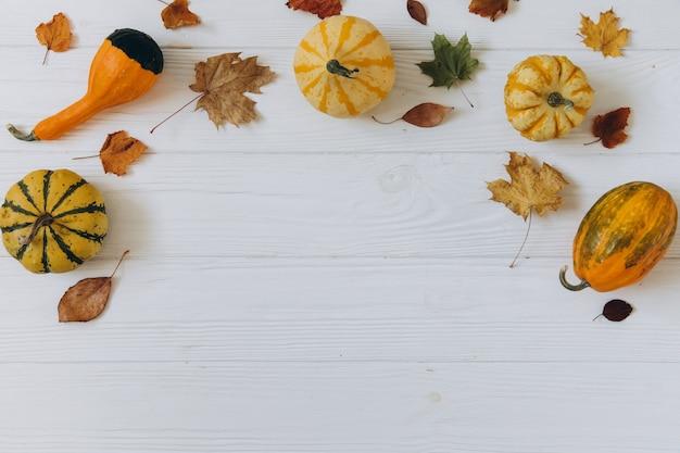 Dynie, Suszone Liście Na Białym Drewnianym Premium Zdjęcia