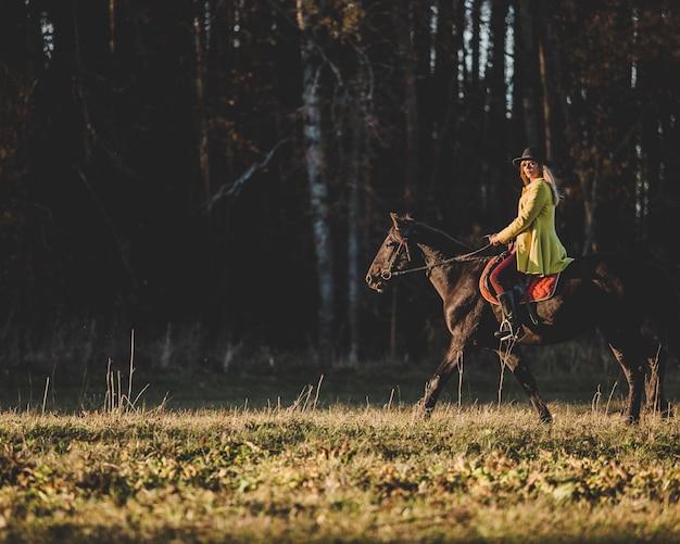 Dziewczyna Jeździ Konno Darmowe Zdjęcia