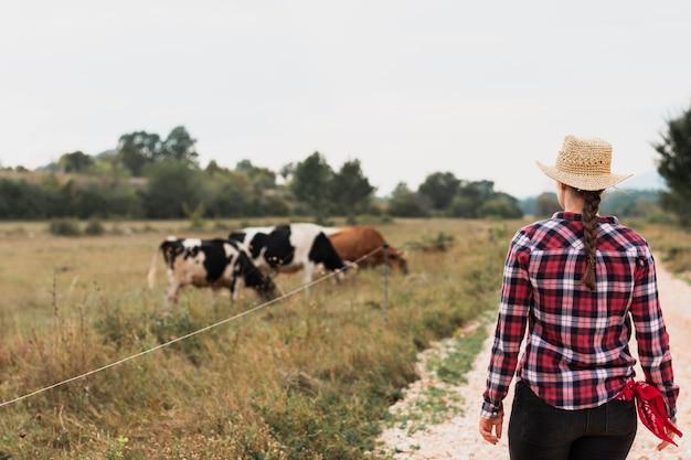 Dziewczyna w czerwonej koszulce kwadrat patrzy krowy pasące się Darmowe Zdjęcia