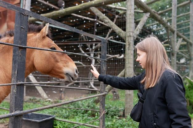 Dziewczyna W Kontakcie Z Koniem W Zoo. Premium Zdjęcia