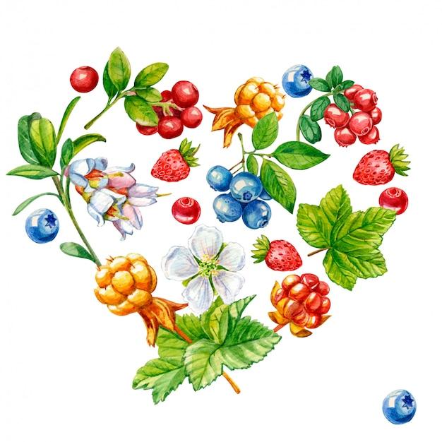 Dzikie jagody w kształcie serca na białym tle Premium Zdjęcia