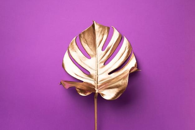 Egzotyczny letni trend w minimalistycznym stylu. złoty monstera tropikalny liść palmy Premium Zdjęcia