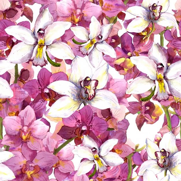 Egzotyczny Wzór Kwiatowy - Tropikalne Kwiaty Orchidei Bez Szwu Tła Premium Zdjęcia