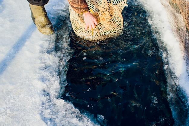 Farm Pstrąg Zimowy Lód-jezioro Rybne Jezioro łowienie Buławę Premium Zdjęcia