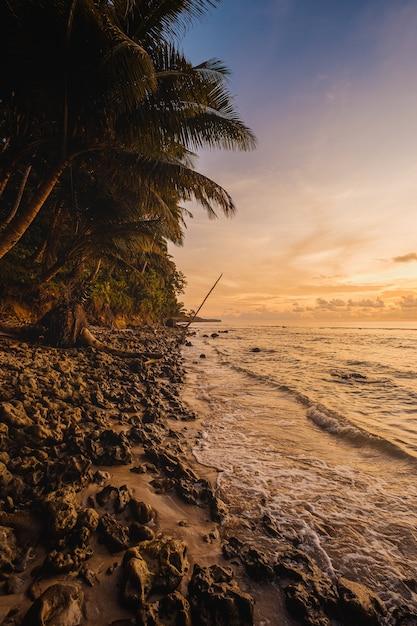 Fascynujący Widok Na Spokojny Ocean I Drzewa Na Brzegu Podczas Zachodu Słońca W Indonezji Darmowe Zdjęcia