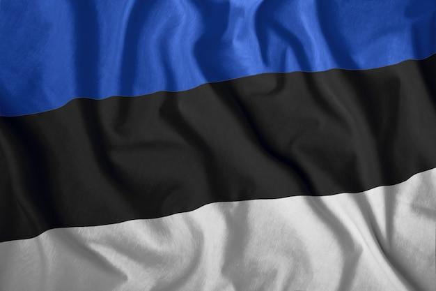 Flaga Estonii Premium Zdjęcia