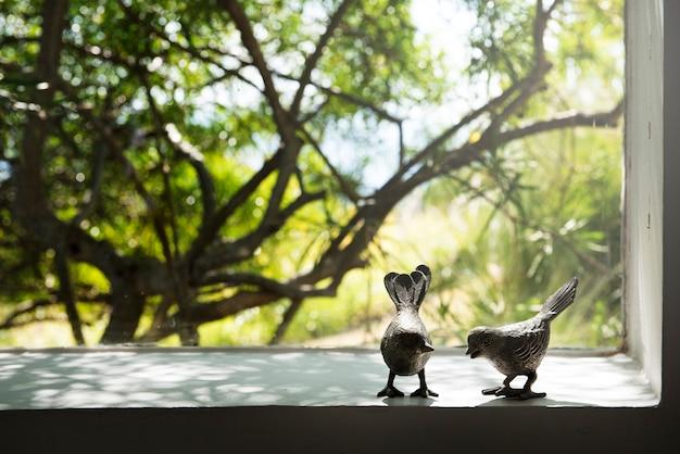 Fotografia Ptak Para Przez Okno Natura Zdjęcie Darmowe Pobieranie