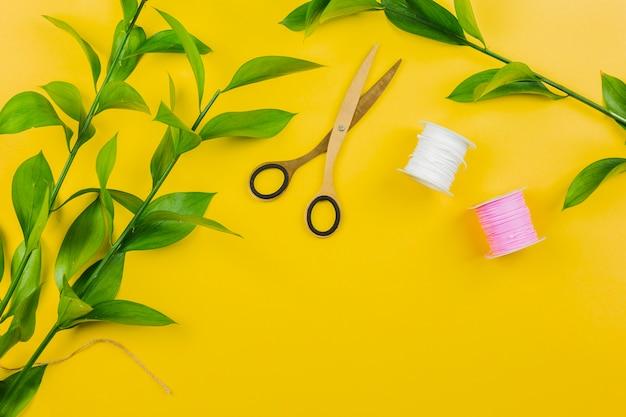 Gałązka Z Zielonymi Liśćmi; Szpule Nożycowe I Nitkowe Na żółtym Tle Darmowe Zdjęcia