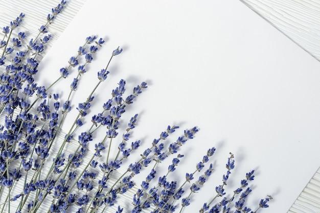 Gałęzie Kwiatów Lawendy Premium Zdjęcia