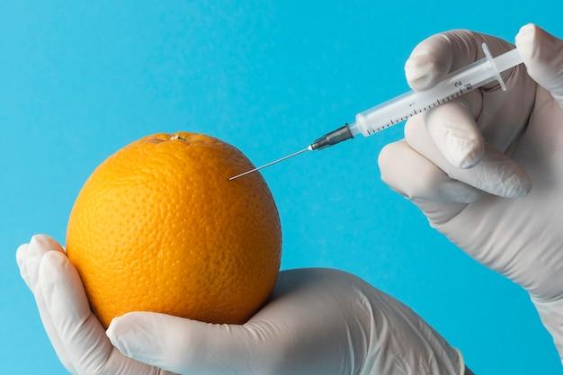Gmo Modyfikowane Chemicznie Pomarańcze Spożywcze Darmowe Zdjęcia