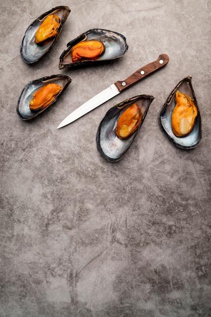Gotowane Małże śródziemnomorskie Z Miejsca Kopiowania Darmowe Zdjęcia